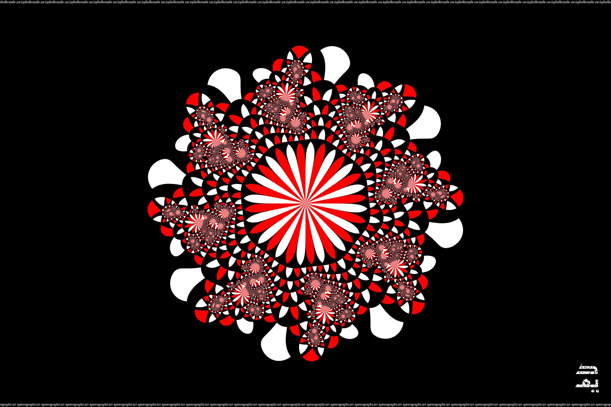 Apeirography_003_-_Chrysanthemum_Canadensis